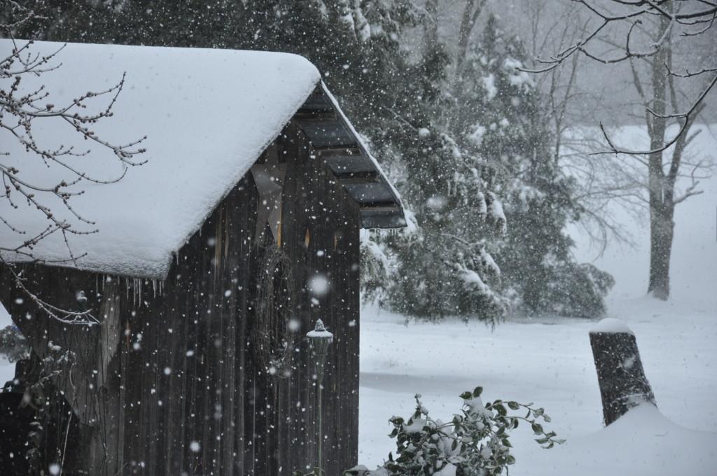 Log Cabin Big Snow 2014