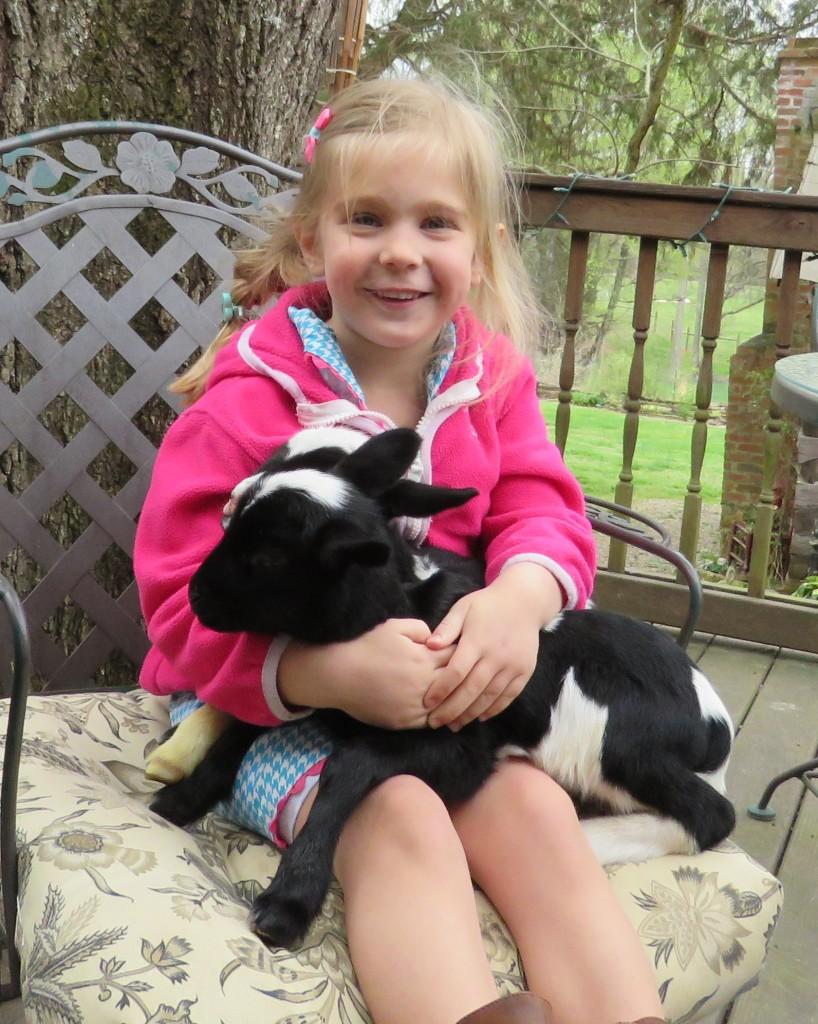 Visitor to Fox Trot Farm