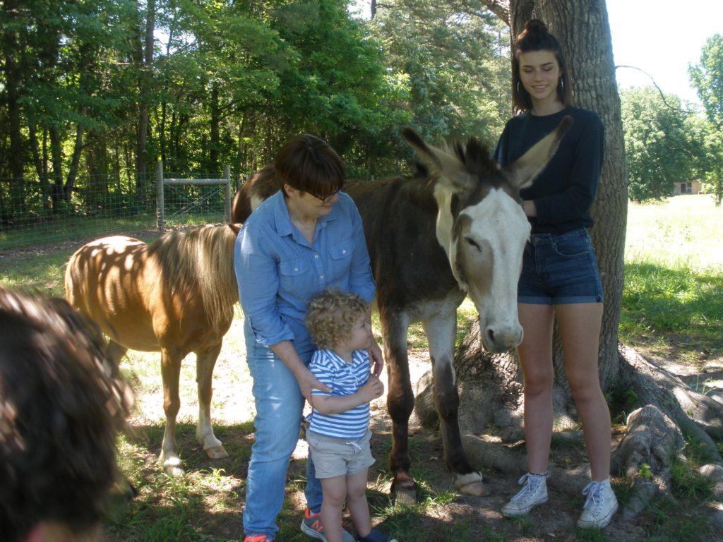 Visitors to Fox Trot Farm