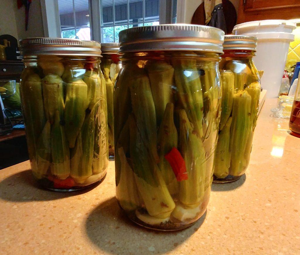 Pickled Okra