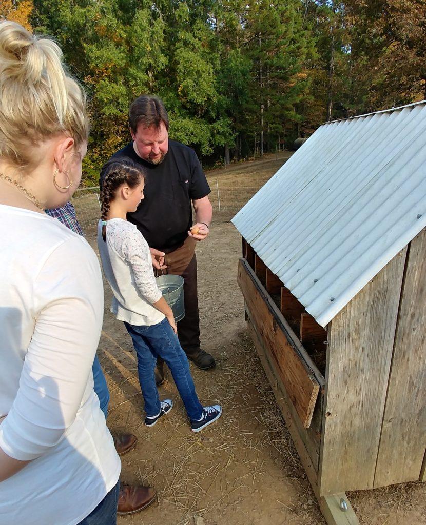 Little Girl Picking Up Eggs on Fox Trot Farm
