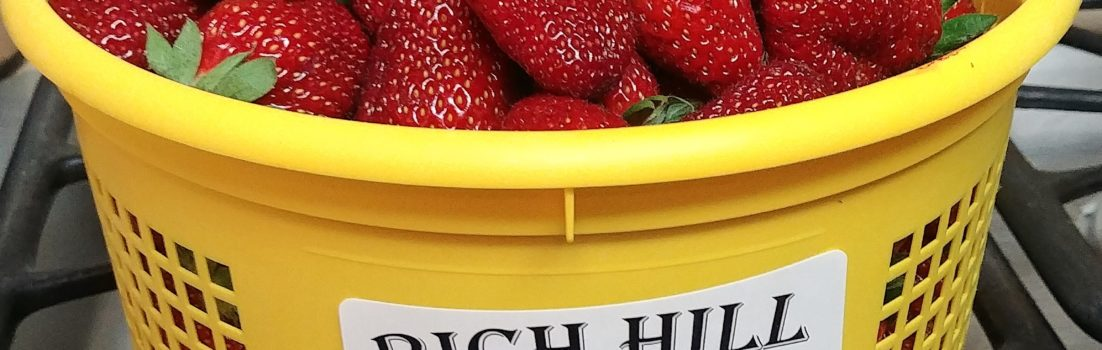 bucket of fresh strawberries