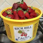 bucket of fresh strawberries