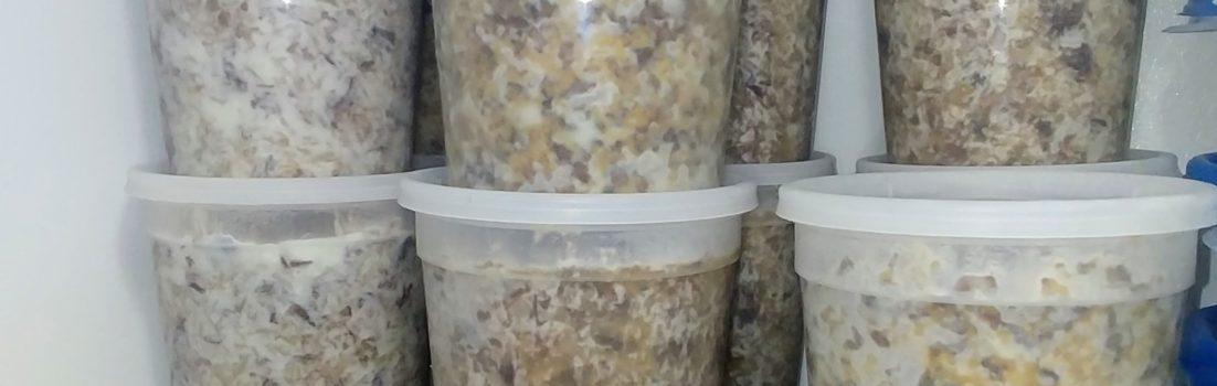 Fox Trot Farm Lamb & Rice dog food in the freezer